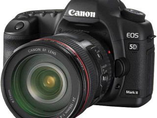 ID: 21, Professional Canon EOS, Nikon Cameras and Lenses (In stock)