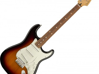 ID: 24, All types of Guitar (In stock)